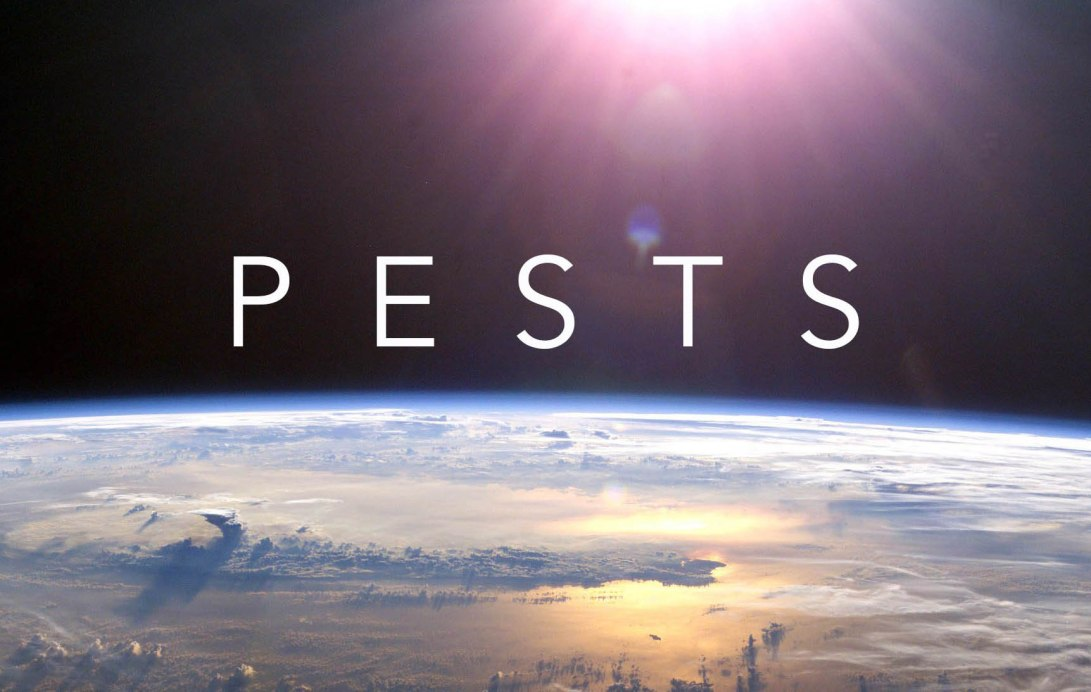 pests-earth